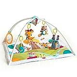 Tiny Love Into the Forest Deluxe Gymini Spieldecke mit Spielbogen, mehrfarbig