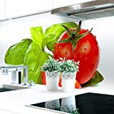 Küchenrückwand Fresh Tomatoe Premium Hart-PVC 0,4 mm selbstklebend 60x51cm