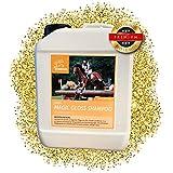 EMMA  Pferdeshampoo I Sparset I Pferdepflege I Fellpflege I Shampoo für Pferde & Hunde I Kamille & Proteinen I mild, ph-neutral I Reinigung von Schmutz und Staub 2500 ml