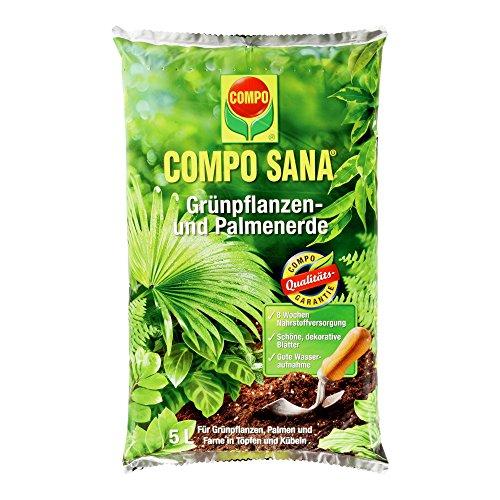 COMPO SANA Grünpflanzen- und Palmenerde, hochwertige Spezialerde für alle Grünpflanzen, Palmen und Farne in Töpfen und Kübeln