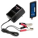 ANSMANN ALCS 2-24A KFZ Automatik-Ladegerät / Vielseitiges Batterieladegerät für Autobatterien & Bleiakkus mit 2V, 6V, 12V & 24V / Ideal für PKW, Motorrad, Roller oder Boot / Inkl. Kfz-Batterietester
