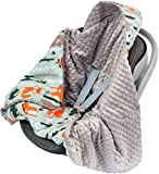 Divita Babydecke Minky 90x90 cm Decke Baby Einschlagdecke mit Kapuze für Kinderwagen Buggy Babyschale (Grau/Wald)