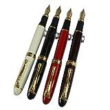 4 Stück Gullor 450 Füllfederhalter in 4 Farben (helle Farben) mit Stift Beutel