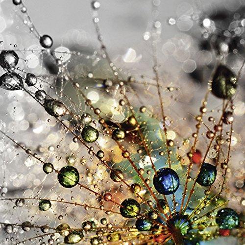 Artland Qualitätsbilder I Glasbilder Deko Glas Bilder Botanik Blumen Pusteblume Foto Bunt F1YG Farbenfrohe Natur