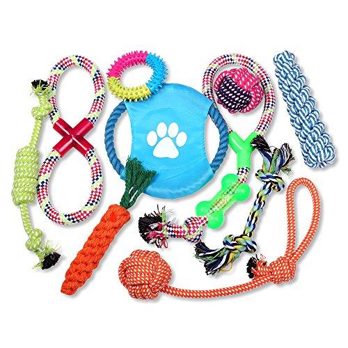 Schramm 10er Set Hunde Spielzeug aus Seil Kauspielzeug Dog Hund Kauspielzeug Baumwollknoten Unzerstörbar Hundespielzeug 10 Teile Kauspielzeug