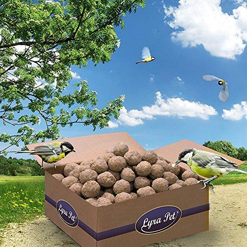 200 x 90 g Lyra Pet Meisenknödel ohne Netz vom Hersteller Vogelfutter Fettfutter
