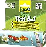 Tetra Pond Test 6in1 (Teststreifen zur Bestimmung von 6 wichtigen Wasserwerten im Gartenteich), 1 Dose (24 Streifen)