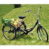 ZNL FANO-TEC Dreirad Für Erwachsene Lastenfahrrad Erwachsenendreirad Seniorenrad 24' 6-Gang-Schaltung Shimano FT-7009 Schwarz