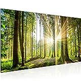 Bilder Wald Landschaft Wandbild 100 x 40 cm Vlies - Leinwand Bild XXL Format Wandbilder Wohnzimmer Wohnung Deko Kunstdrucke Grün 1 Teilig - Made IN Germany - Fertig zum Aufhängen 503812b