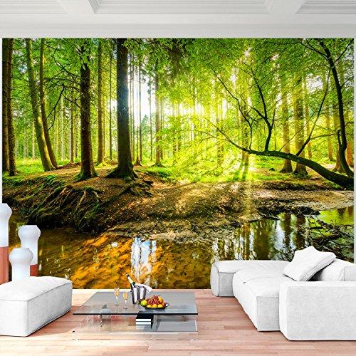Fototapete Wald 352 x 250 cm Vlies Wand Tapete Wohnzimmer Schlafzimmer Büro Flur Dekoration Wandbilder XXL Moderne Wanddeko - 100% MADE IN GERMANY - Runa Tapeten 9141011a