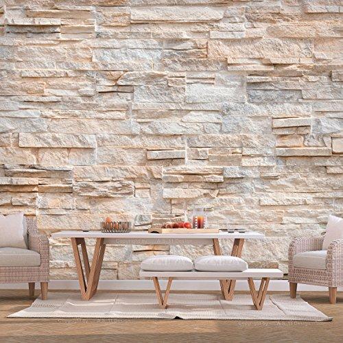 murando - Fototapete Steinoptik 400x280 cm - Vlies Tapete - Moderne Wanddeko - Design Tapete - Wandtapete - Wand Dekoration - Steintapete Steine Stein Mauer Steinoptik 3D f-B-0018-a-b