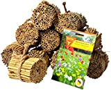 Luxus-Insektenhotels 22690e Schilfrohrhalme Set plus Samenmischung 'Bienenparadies', 35 Sorten, circa 1000 Stück, 9 cm lang