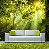 murando - Fototapete Wald 400x280 cm - Vlies Tapete - Moderne Wanddeko - Design Tapete - Wandtapete - Wand Dekoration - Natur Landschaft c-A-0077-a-a