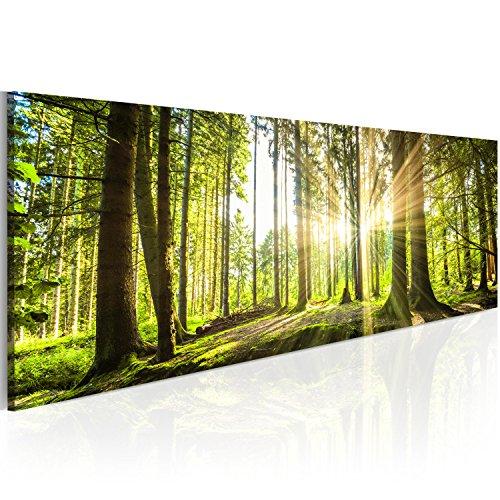 Neuheit! Modernes Acrylglasbild 135x45 cm - 1 Teile - 2 Formate zur Auswahl – Glasbilder – TOP - Wand Bild - Kunstdruck - Wandbild – Bilder – Wald Baum Natur Landschaft c-B-0077-k-b 135x45 cm