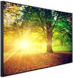 InfrarotPro   Infrarotheizung 900 Watt   Bildheizung 120x75x3 cm   Made in Germany   Geprüfte Technik   Ultra-HD Auflösung   (Herbstzeit im Wald)