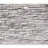 murando - Fototapete Steinoptik 400x280 cm - Vlies Tapete - Moderne Wanddeko - Design Tapete - Wandtapete - Wand Dekoration - Steintapete Steine Stein Mauer Steinoptik 3D grau f-A-0588-a-a