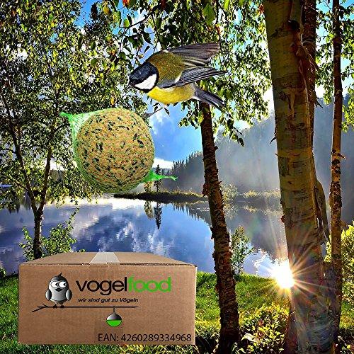 200 Stck Sommerknödel Meisenknödel mit Netz a 90 g = 18 kg Marke 'Vogelfood' Vogelfutter Wildvogelfutter Fettfutter