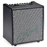 Stagg KBA40 EU+UK Keyboard-Verstärker - 40 Watt RMS
