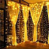 MeaMae Care Lichtervorhang Vorhang Lichterkette innen/außen 300 LEDs 3M*3M warmgeld wasserdicht Lichterkettenvorhang für Zimmer/Garten/Balkon/Weihnachten/Hochzeit usw.