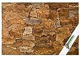 """XL Korkrückwand """"Desert"""" (Rückwand Terrarium), 3D Kork-Rückwand 90 x 60 cm Wüste Naturkork Korkrinde"""