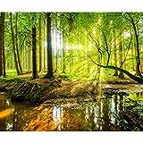 decomonkey Fototapete selbstklebend Wald 3D 343x256 cm XXL Selbstklebende Tapeten Wand Fototapeten Tapete Wandtapete klebend Klebefolie Natur Landschaft Baum