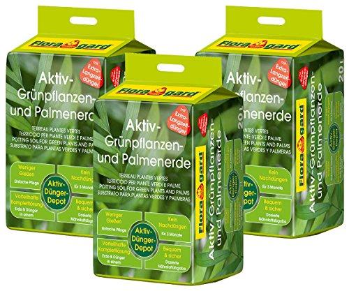 Floragard Aktiv-Grünpflanzen und Palmenerde