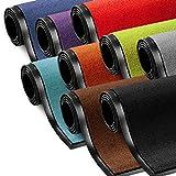 Schmutzfangmatte ColorLine | viele Größen und Farben zur Auswahl | Fußmatte für Innenbereich | Mono Color Rot 60x180 cm