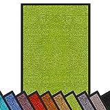 Schmutzfangmatte Rhine | waschbare & extra leistungsstarke Fußmatte | Sauberlaufmatte mit Rutschfester Rückseite | Türmatte in vielen Größen & Farben (120x180 cm, Grün)