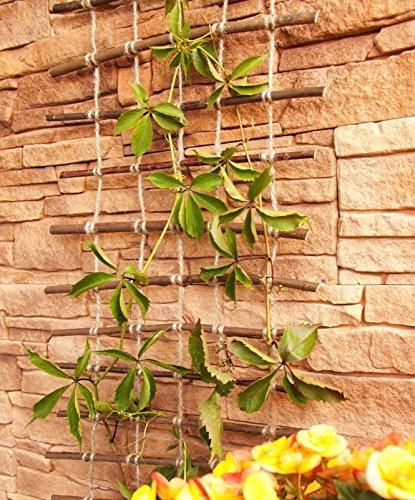 Rankhilfe, Rankgitter aus gekochter natürlicher Weide und Juteschnur bedenkenlos für Gartengemüse und Tiere, Länge: 200 cm, Breite:50 cm