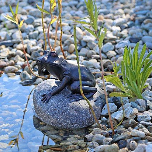 Wasserspeier Figur Frosch auf Stein für Gartenteich Brunnenbecken Dekofigur Wasserspiel Teich