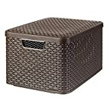 Curver 03619-210-00 Aufbewahrungsbox Style mit Deckel L, 30 L, dunkelbraun