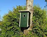 Jagdfallen Steingraf 2x/4x Premium Nistkasten Vogelhaus Nisthaus Nisthöhle Einflugloch 30mm (1 Stück, Grün)