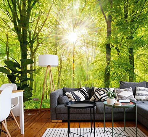 murimage Fototapete Wald 3D 274 x 254cm Bäume Sonne inklusive Kleister Wohnzimmer Schlafzimmer Küche