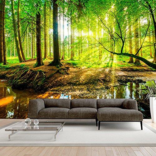 murando - Fototapete Wald 350x256 cm - Vlies Tapete - Moderne Wanddeko - Design Tapete - Wandtapete - Wand Dekoration - Natur Baum grün c-B-0241-a-a