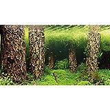 Hobby 31030 Fotorückwand-Zuschnitt Scaper's Hill / Scaper's Forest