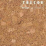 1 qm | Korkboden TRECOR Korkfertigparkett 'BRAGA' mit Klicksystem | Oberfläche: Keramiklackierung | Stärke: 10,5 mm - 3 mm Nutzschicht - Format: 905 x 295 mm - Sie kaufen 1 m²
