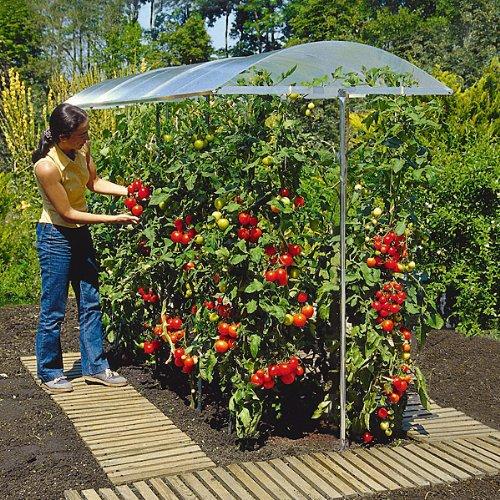 Beckmann KG PSN2 Schutzdach für Pflanzen Größe  2 200 x 112 cm
