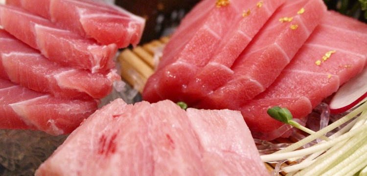 Thunfisch Muskelaufbau