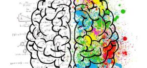 kognitive Vorbereitung durch die Darstellung des Gehirns