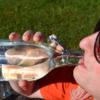 Eine Frau die aus der Glasflasche trinkt. Die Frau trägt eine Sonnenbrille.