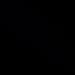 Akku-Handstaubsauger
